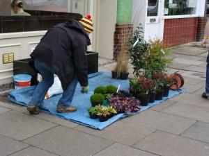 The Chiswick Gardener