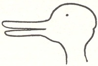 wittgenstein_duck_rabbit